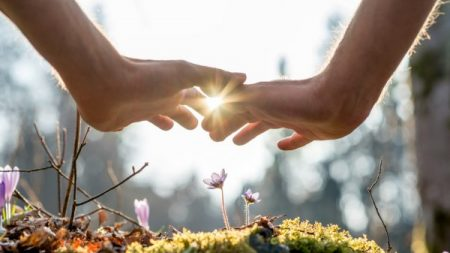 Causes You Have To Cease Truth About Energy Healing Dubai
